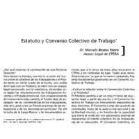 4 Paritarias Estatuto.pdf